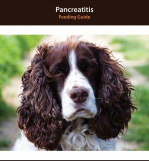 Dog Pancreatitis Diet