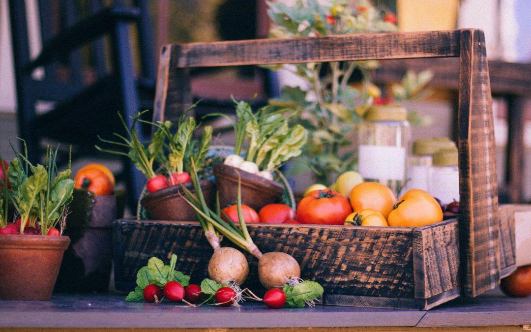 Fruit & Vegetables for Dogs