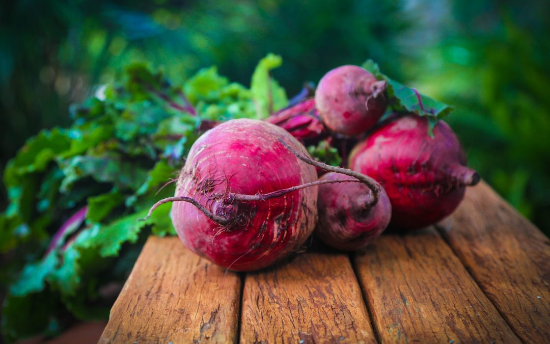 Beetroot for Dog Health