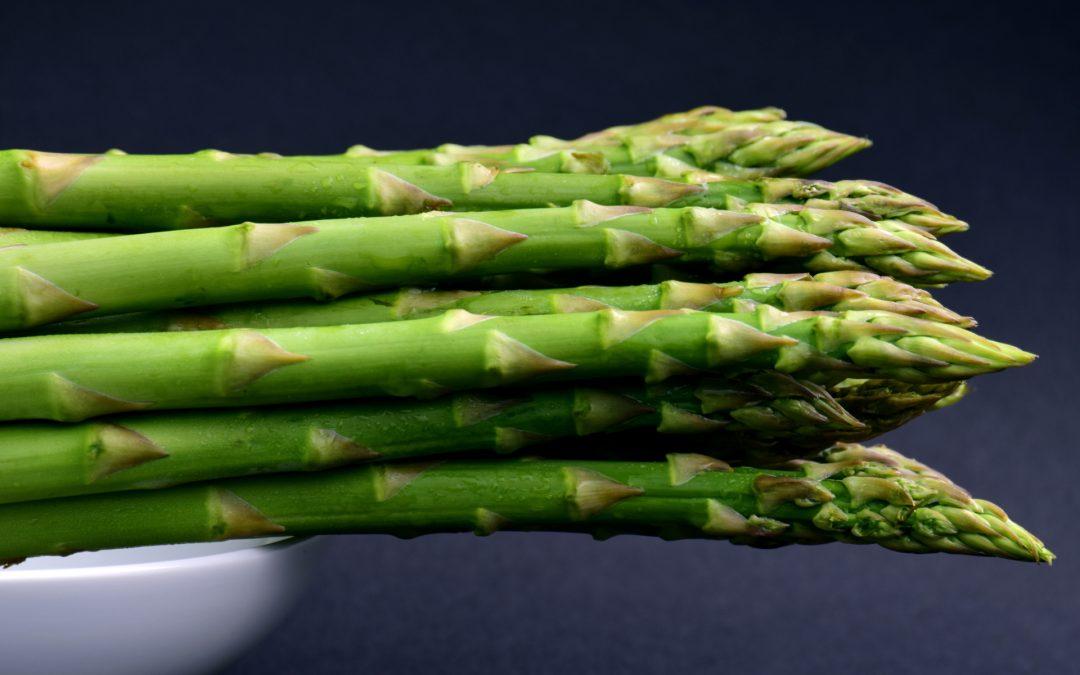 Asparagus for Dogs