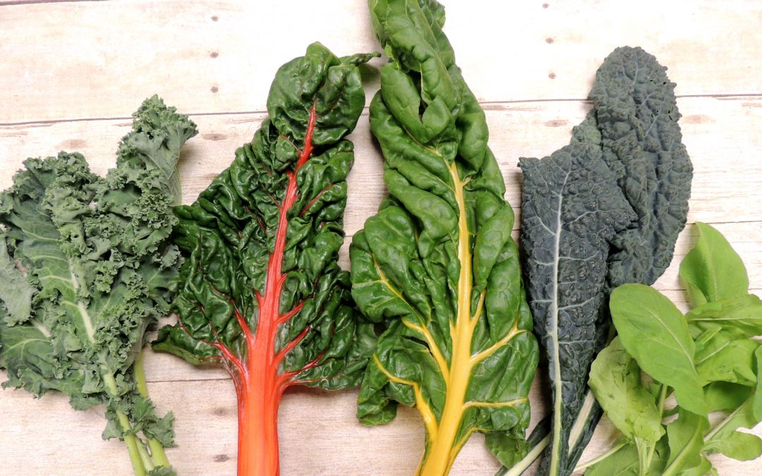 Leafy Greens for Dogs