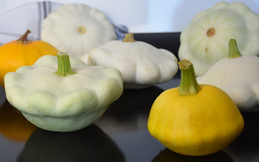 Summer Squash for Dogs