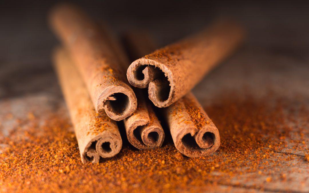 Cinnamon for Dogs