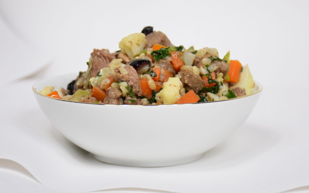 The Goodness of Homemade Dog Food