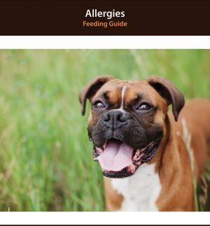Dog Allergy Diet Plan