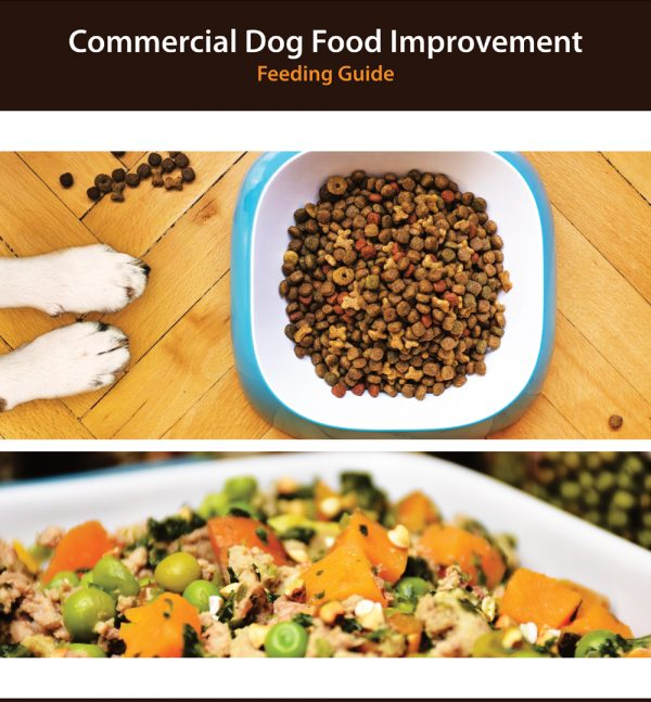 Commercial Dog Food Improvement