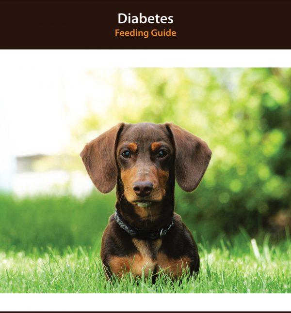 Dog Diabetes Diet Food