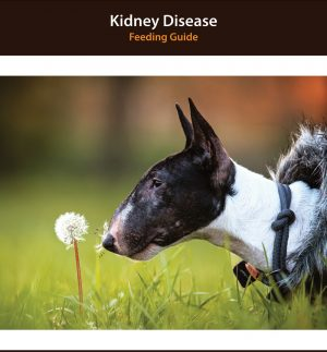 Dog Kidney Disease Diet