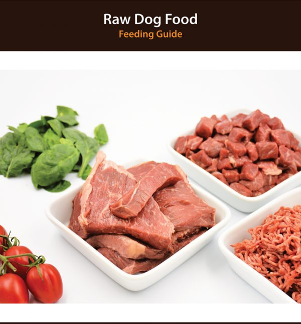 Dog Raw Diet Guide