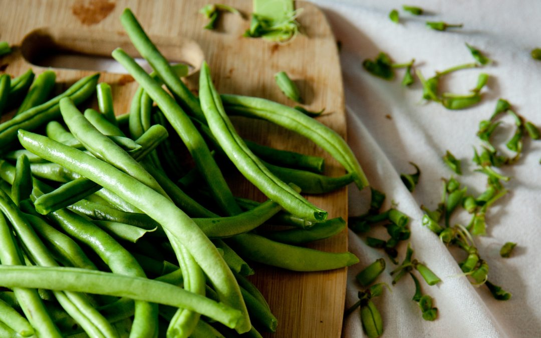 Green Beans Can Help Your Dog Lose Weight