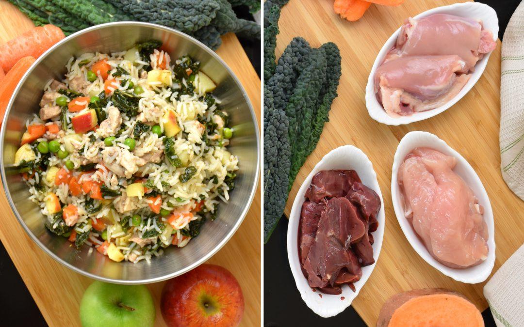 Homemade Dog Food vs Raw