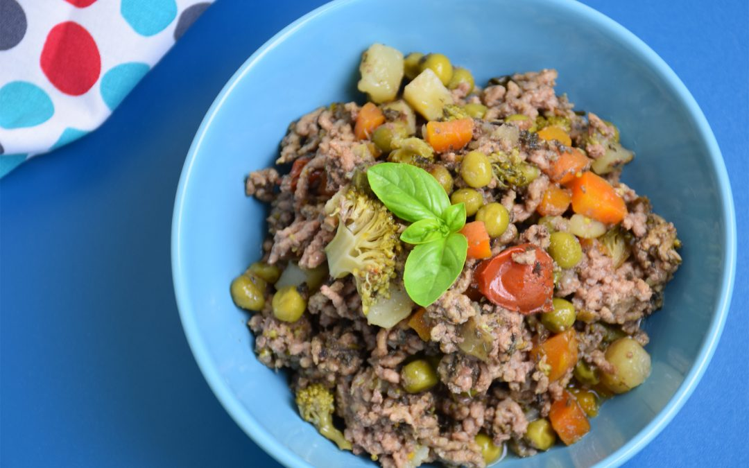 The Health Benefits of Homemade Dog Food