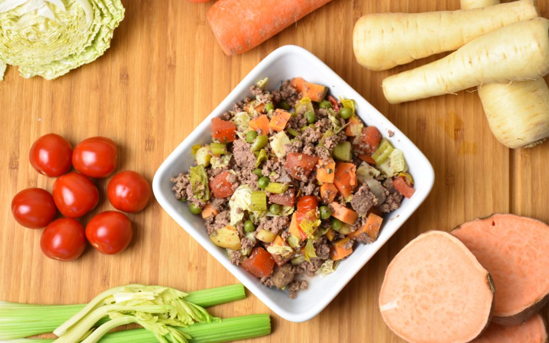 Feed Your Dog Well for Future Health