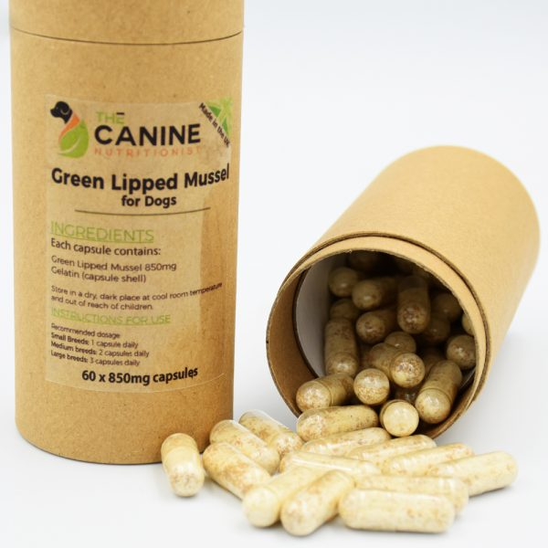 Green Lipped Mussel for Dogs